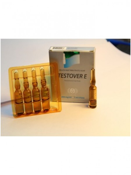 Testover E - Тестостерона энантат 1мл - 250мг